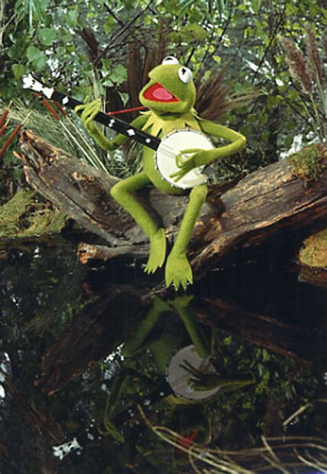 Kermit's Swamp | Muppet Wiki | FANDOM powered by Wikia