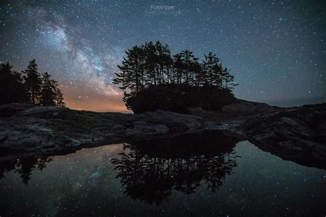 Botanical Galaxy - Botany Bay, Vancouver Island | The